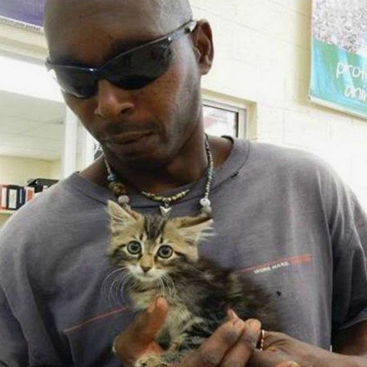 He is thankful he did! Stuck inside his truck frame was an 8-week-old kitten that was rescued with the help of his local humane society.