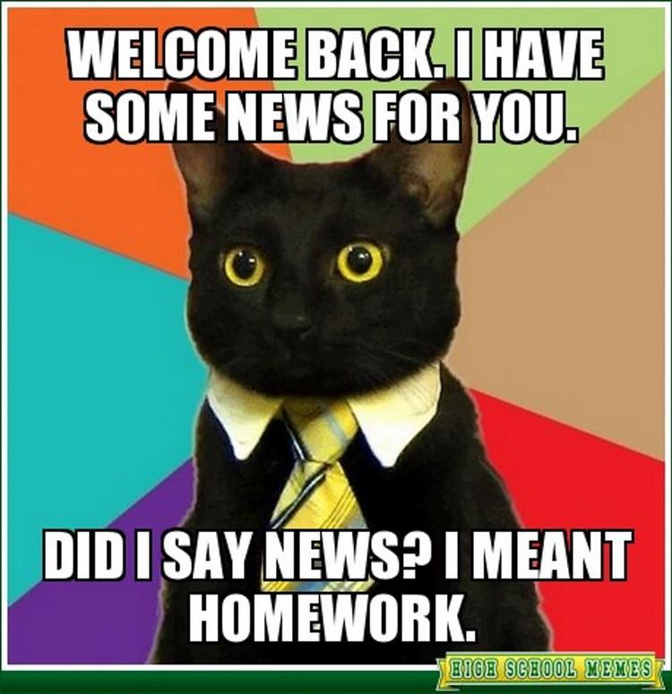 49 Funny School Memes - Homework already?