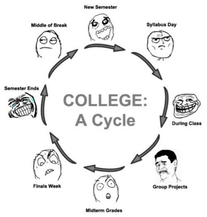 """""""College: A cycle."""""""