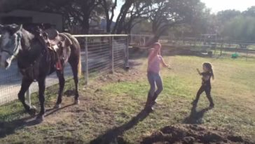 Horse Dances to 'Watch Me (WhipNae Nae)' with Two Little Girls.