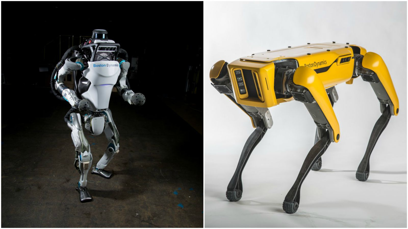 Robot Dog SpotMini and Humanoid Atlas Will Either Excite or Terrify You.