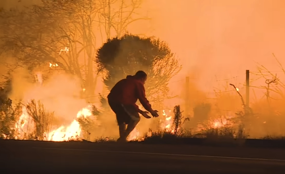 Brave Man Rescues Rabbit During Southern California Wildfires.