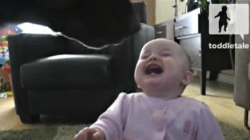 Baby Girl Laughs While Watching the Family Dog Eat Popcorn.