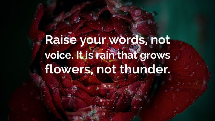 "27 Rumi Quotes - ""Raise your words, not voice. It is rain that grows flowers, not thunder."" - Rumi"