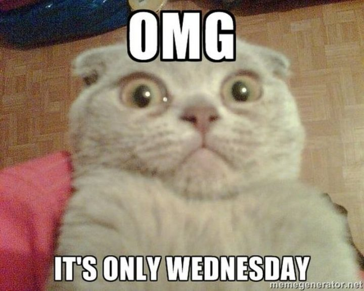 "15 Funny Wednesday Memes - ""OMG, it's only Wednesday."""