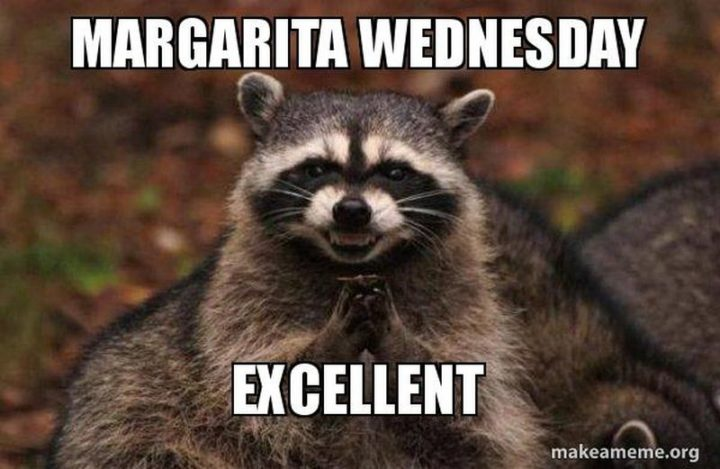 "15 Funny Wednesday Memes - ""Margarita Wednesday. Excellent."""