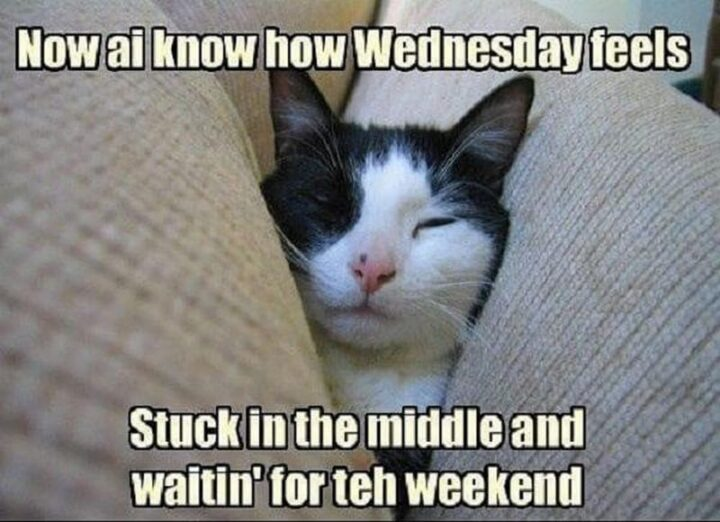 """""""Now I know how Wednesday, hump day, feels. Stuck in the middle and waitin' for the weekend."""""""