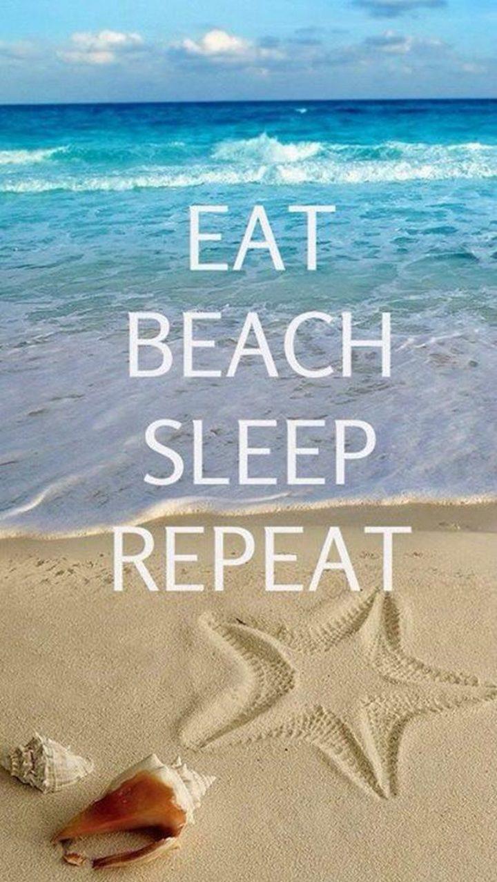 "15 Vacation Memes - ""Eat. Beach. Sleep. Repeat."""