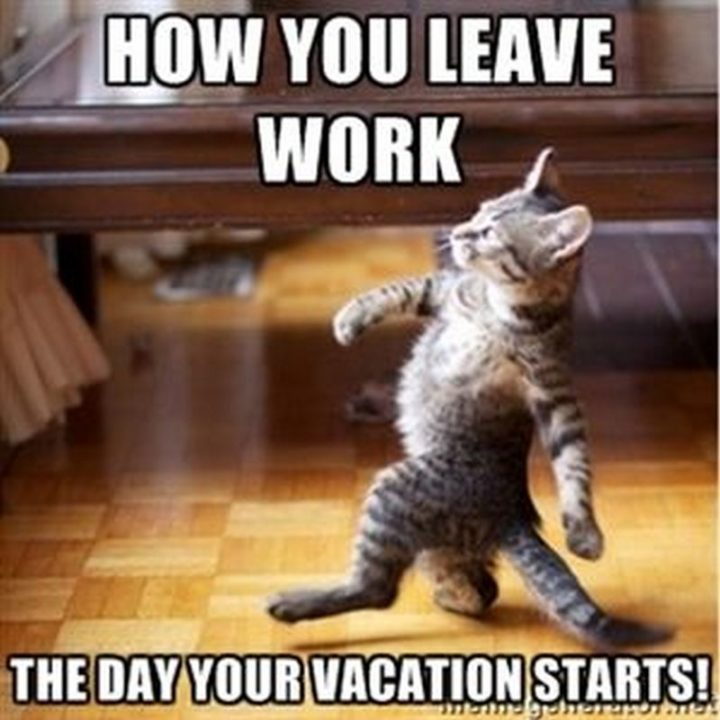 "15 Vacation Memes - ""How you leave work the day your vacation starts!"""