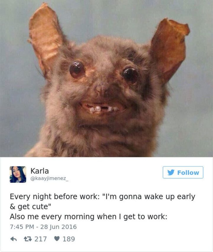 "27 Funny Work Memes - ""Every night before work: ""I'm gonna wake up early & get cute"" Also me every morning when I get to work:"""