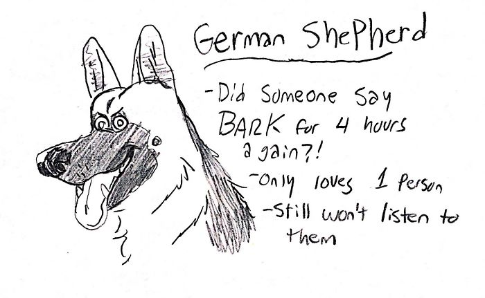 Funny Guide to Dog Breeds - German Shepherd.