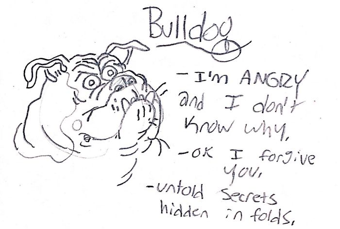Funny Guide to Dog Breeds - Bulldog.