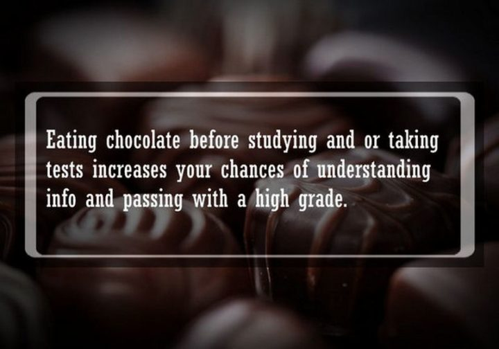 """19 Food Facts -""""Eating chocolate before studying and or taking tests increases your chances of understanding info and passing with a high grade."""""""