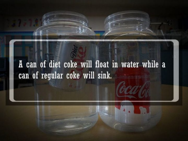 "19 Food Facts - ""A can of Diet Coke will float in water while a can of regular coke will sink."""