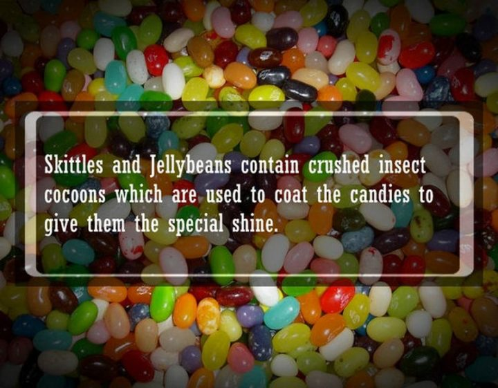 "19 Food Facts - ""Skittles and jellybeans contain crushed insect cocoons which are used to coat the candies to give them the special shine."""