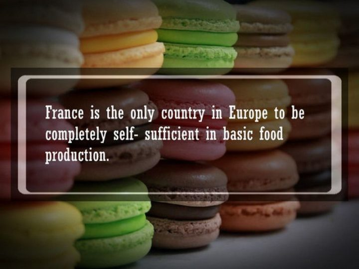"19 Food Facts - ""France is the only country in Europe to be completely self-sufficient in basic food production."""