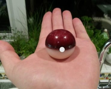 If You're Hungry For a Poké Ball, Here's How to Make One. Pokémon Fans Rejoice!