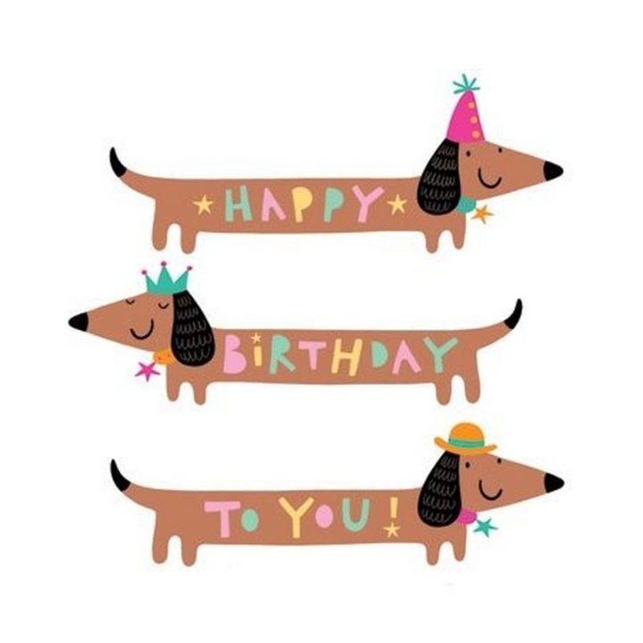"""101 Happy Birthday Memes - """"Happy Birthday to you!"""""""