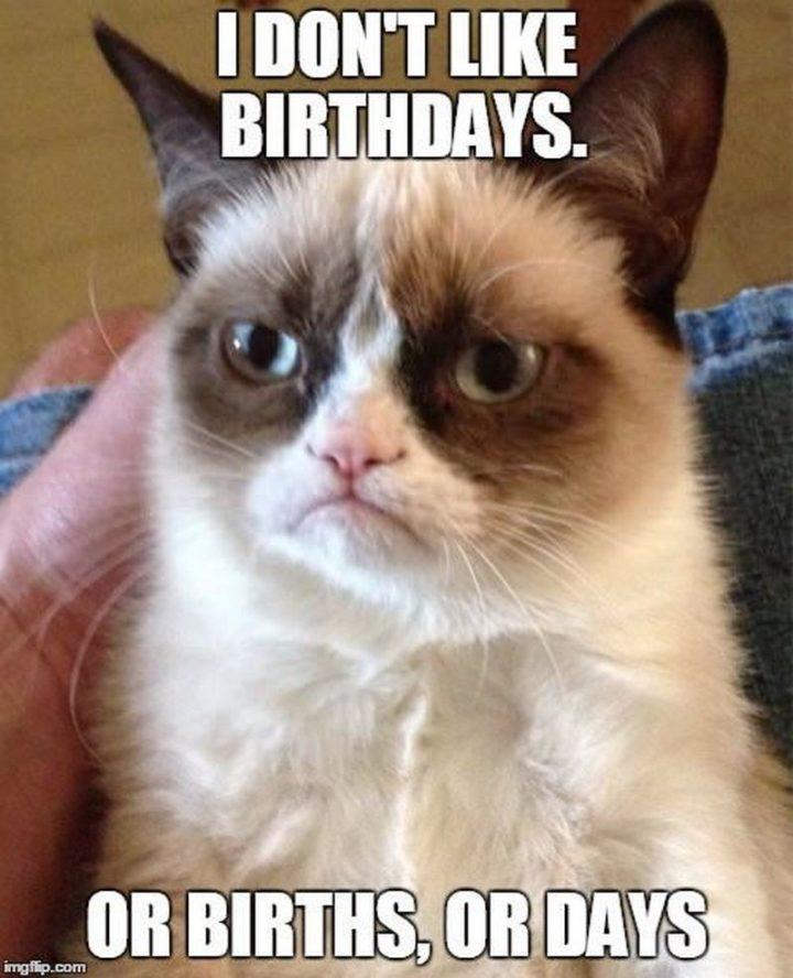 "101 Happy Birthday Memes - ""I don't like birthday or births, or days."""