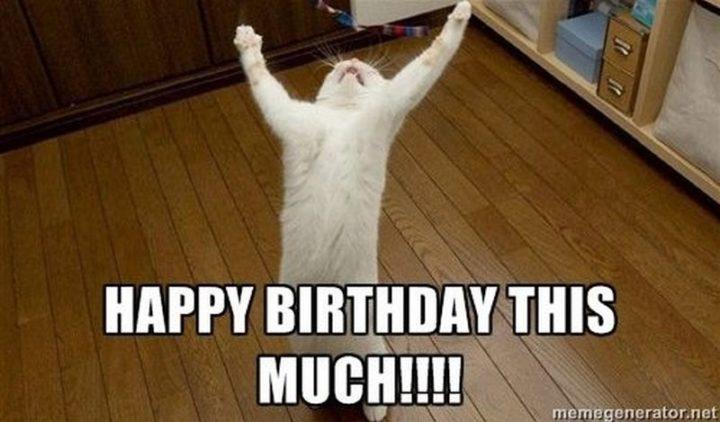 """101 Happy Birthday Memes - """"Happy birthday this much!!!!"""""""