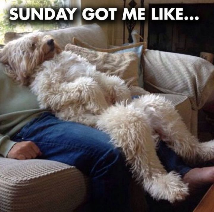 """Sunday got me like..."""