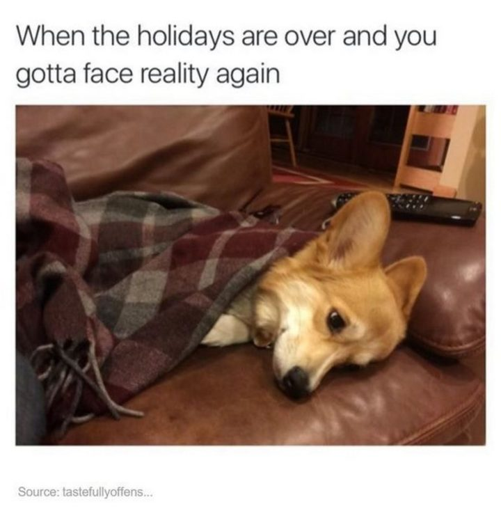 "21 Back to Work Memes - ""When the holidays are over and you gotta face reality again."""