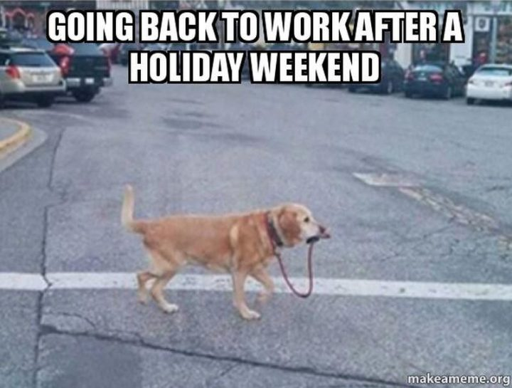 """21 Back to Work Memes - """"Going back to work after a holiday weekend."""""""