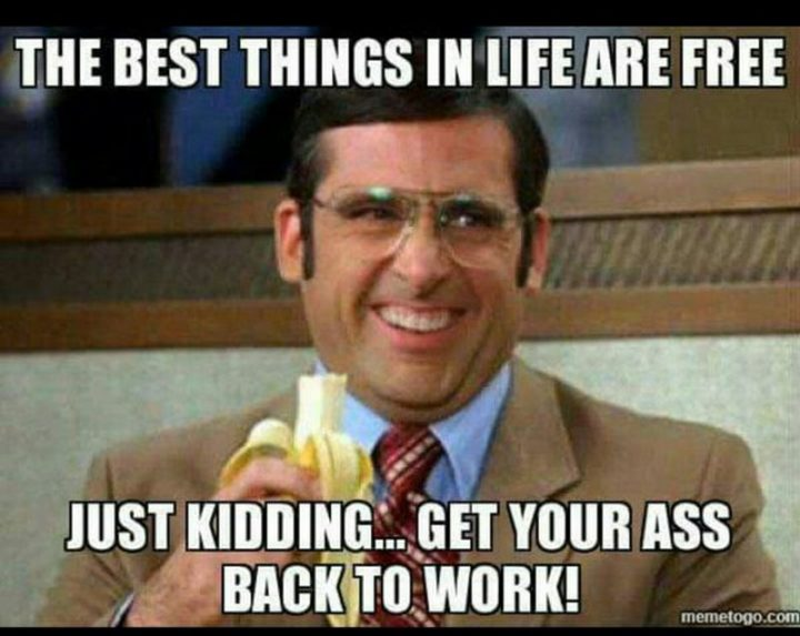 "21 Back to Work Memes - ""The best things in life are free. Just kidding...get your ass back to work!"""