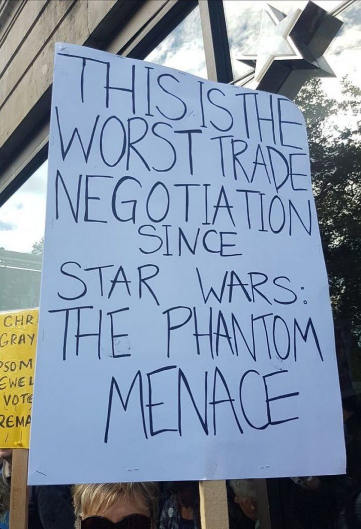 "23 Funny Anti-Brexit Signs - ""This is the worst trade negotiation since Star Wars: The Phantom Menace."""
