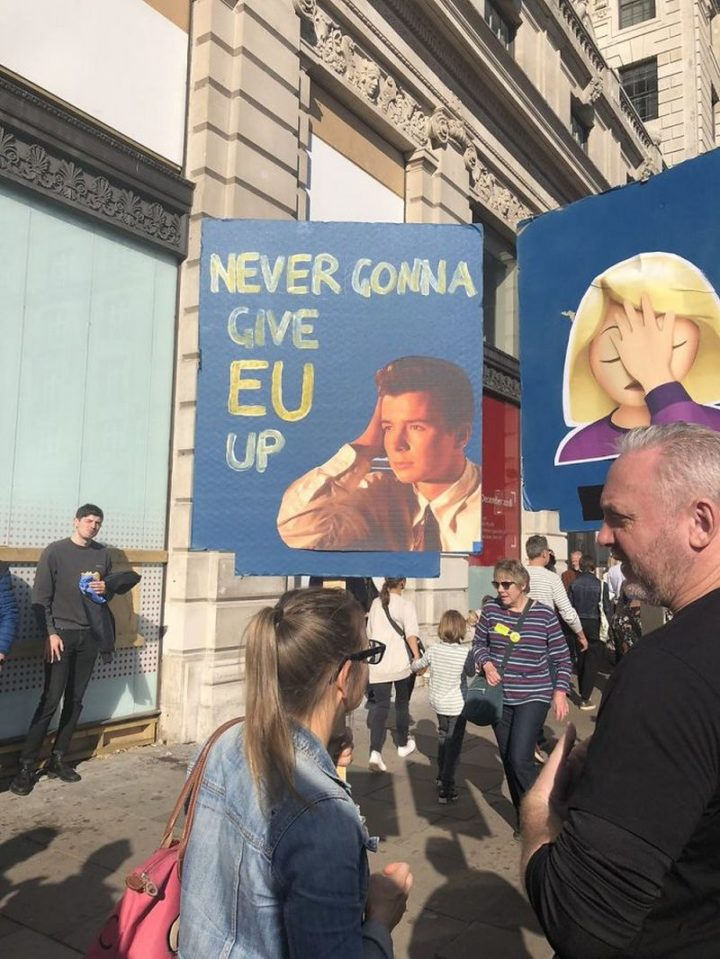 "23 Funny Anti-Brexit Signs - ""Never gonna give EU up."""