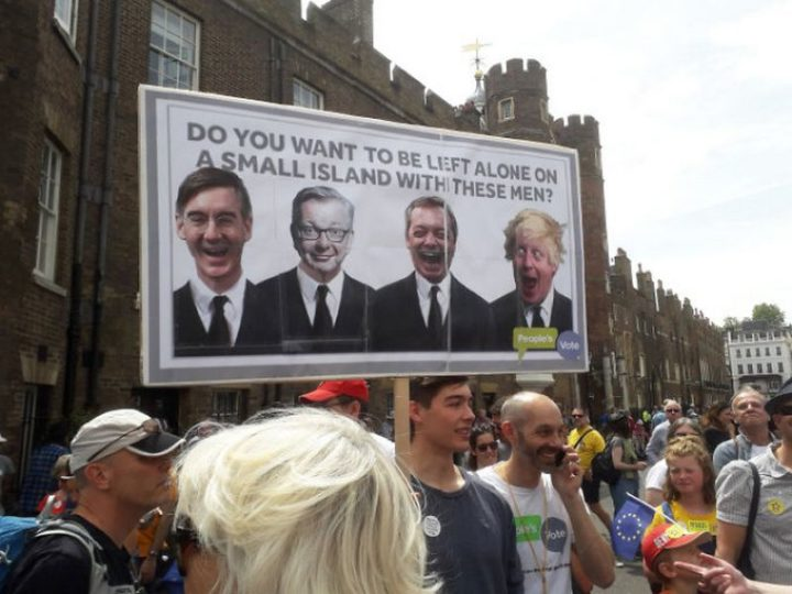 "23 Funny Anti-Brexit Signs - ""Do you want to be left alone on a small island with these men?"""
