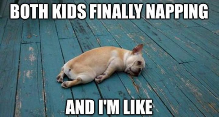 "37 Best Exhausted Memes - ""Both kids finally napping and I'm like."""