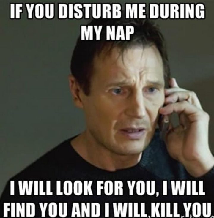 "37 Best Exhausted Memes - ""If you disturb me during my nap, I will look for you, I will find you and I will kill you."""