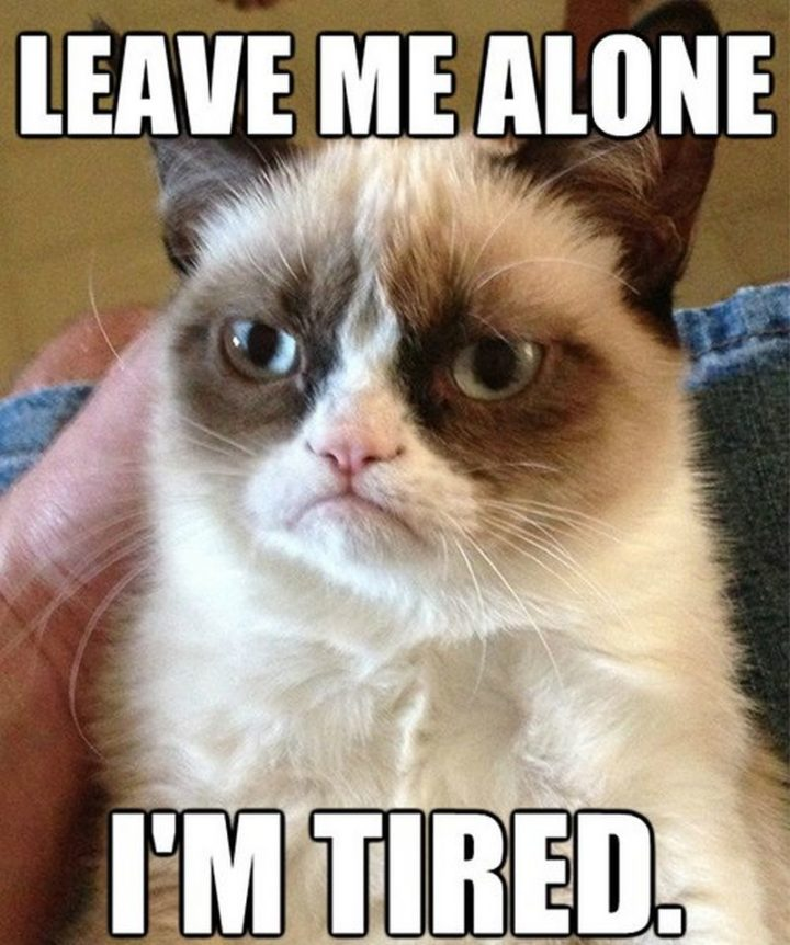 "37 Best Exhausted Memes - ""Leave me alone. I'm tired."""