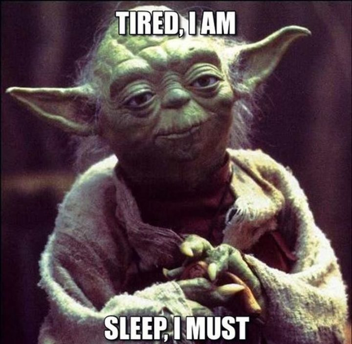 "37 Best Exhausted Memes - ""Tired, I am. Sleep, I must."""