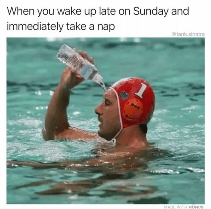 "37 Best Exhausted Memes - ""When you wake up late on Sunday and immediately take a nap."""