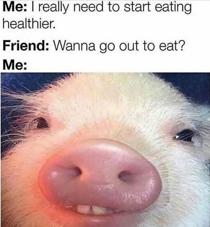 "37 Funny Food Memes - ""I really need to start eating healthier."""