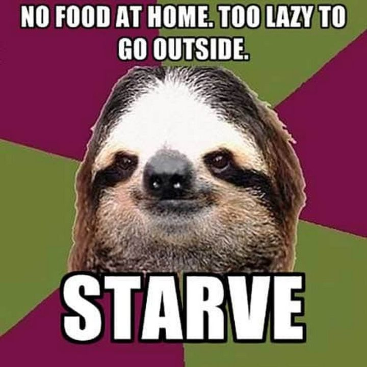 "37 Funny Food Memes - ""No food at home. Too lazy to go outside. Starve."""