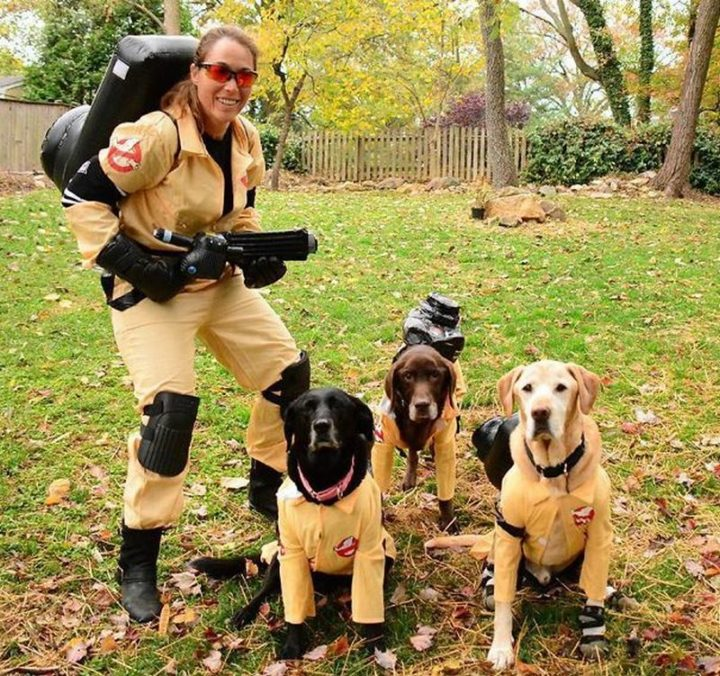 "49 Halloween Costume Ideas - ""I heard they were remaking Ghostbusters with b*tches but this is ridiculous."""