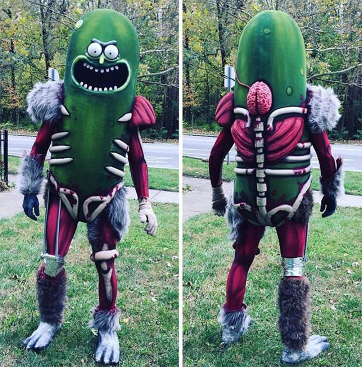 "49 Halloween Costume Ideas - ""Pickle Rick! (Rick and Morty costume)."""