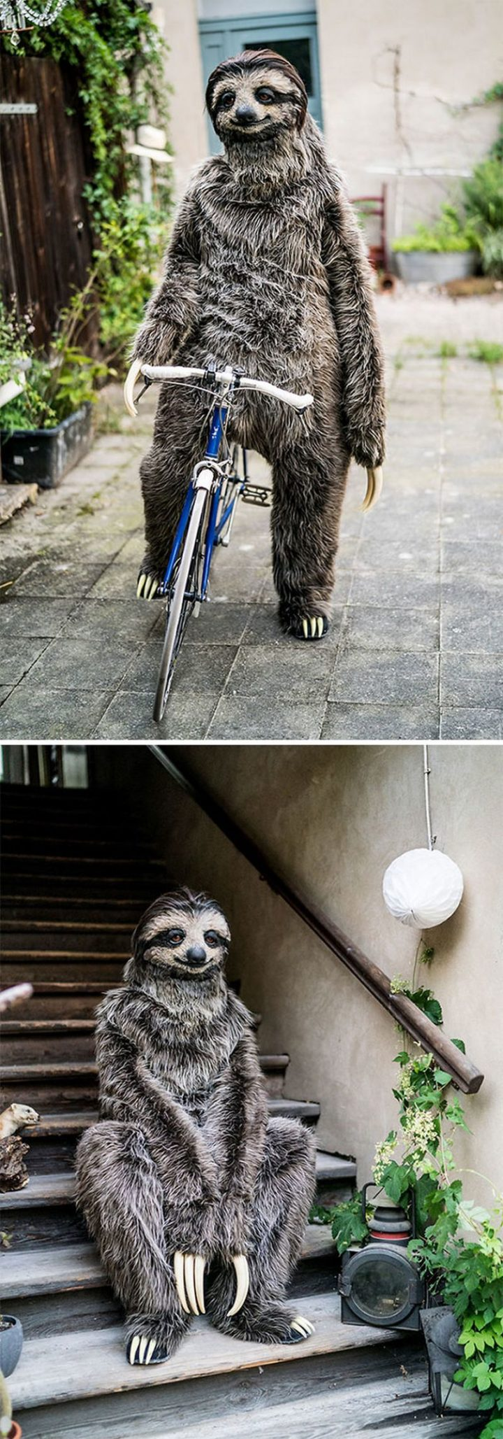 "49 Halloween Costume Ideas - ""I Created A Realistic Sloth Costume."""