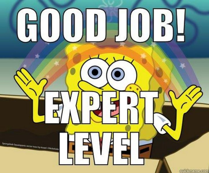 "23 Great Job Memes - ""Good job! Expert level."""