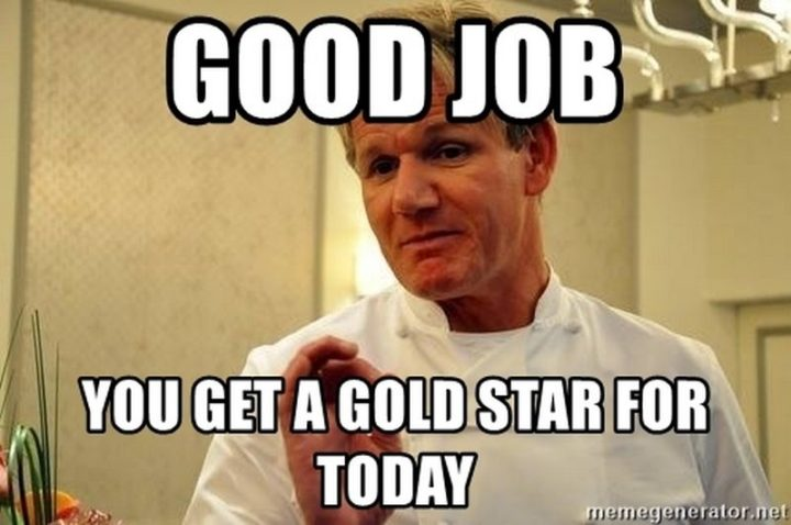 "23 Great Job Memes - ""Good job, you get a gold star for today."""