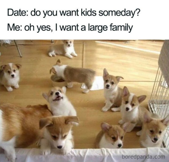 Millennials Choosing Pets Over Kids -