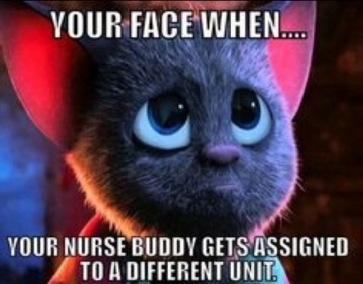 "101 Funny Nursing Memes - ""Your face when...your nurse buddy gets assigned to a different unit."""