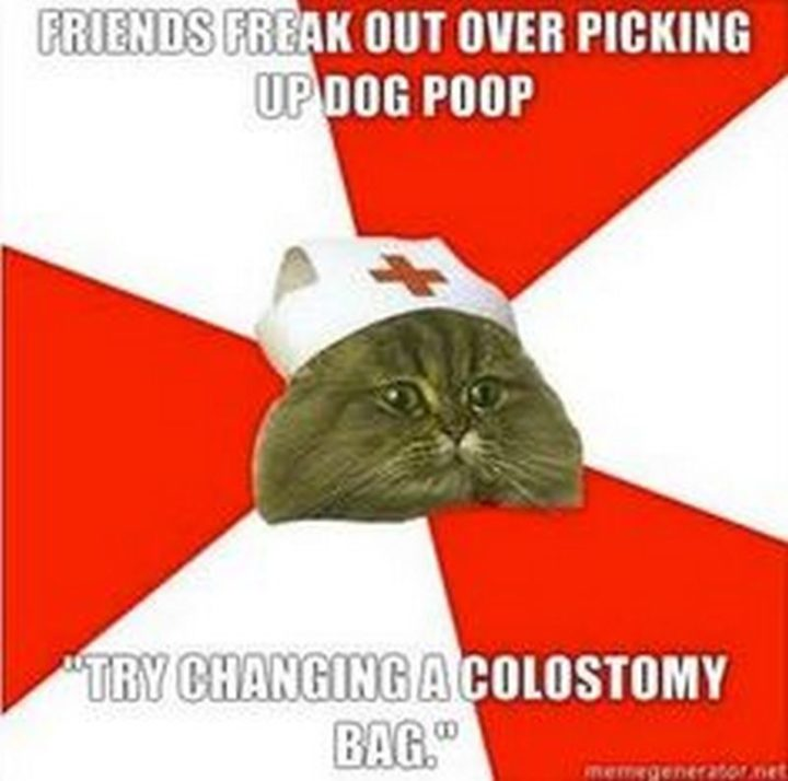 "101 Funny Nursing Memes - ""Friends freak out over picking up dog poop. 'Try changing a colostomy bag.'"""