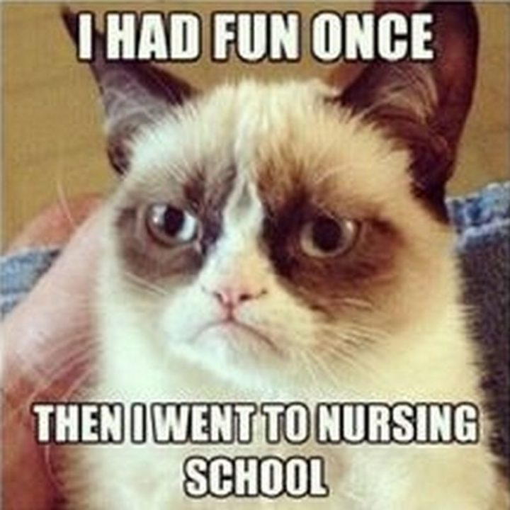 "101 Funny Nursing Memes - ""I had fun once, then I went to nursing memes school."""