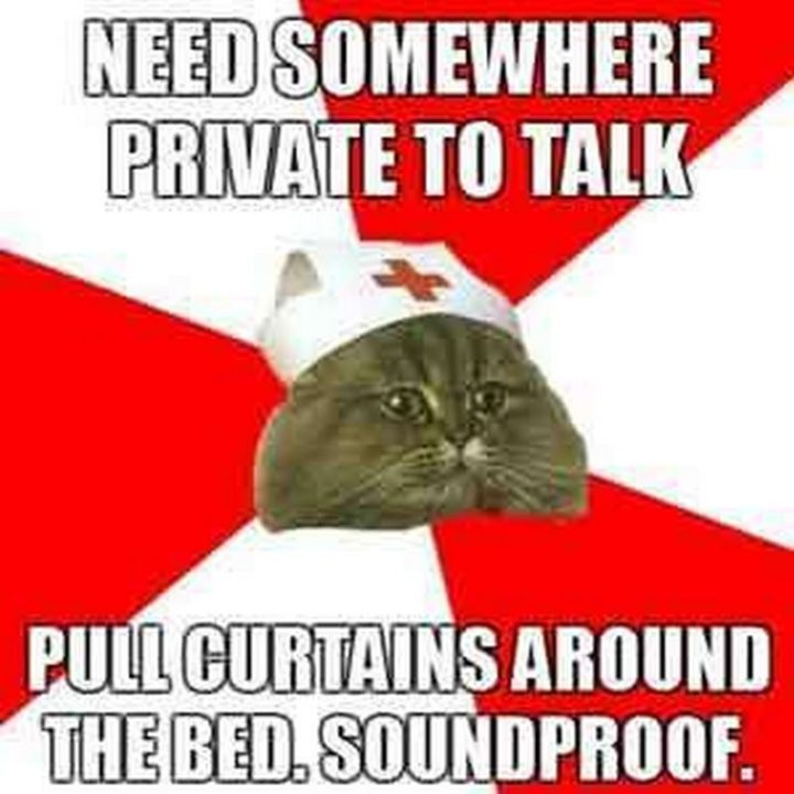 "101 Funny Nursing Memes - ""Need somewhere private to talk. Pull curtains around the bed. Soundproof."""
