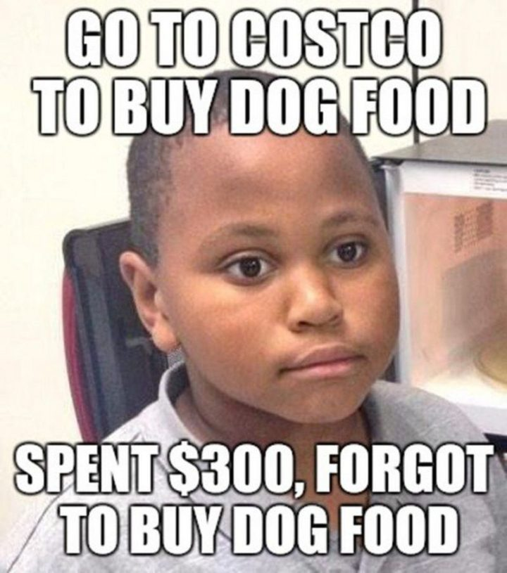 """29 Funny Costco Memes - """"Go to Costco to buy dog food. Spent $300, forgot to buy dog food."""""""