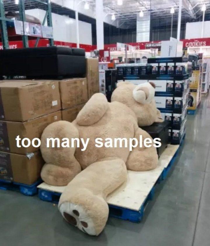 "29 Funny Costco Memes - ""Too many samples."""